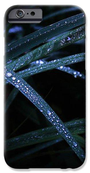 Blue And Green Firework iPhone Case by Viktor Savchenko