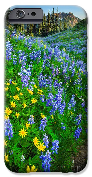 Park Scene iPhone Cases - Blue and Yellow Hillside iPhone Case by Inge Johnsson