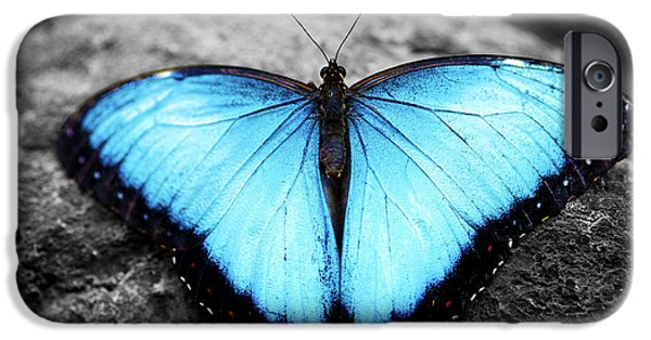 Angel Blues iPhone Cases - Blue angel butterfly 2 iPhone Case by Sumit Mehndiratta