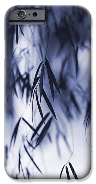 Bamboo Leaves iPhone Cases - Blue Bamboo iPhone Case by Tim Gainey