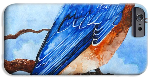 Curtiss iPhone Cases - Blue Bird iPhone Case by Curtiss Shaffer