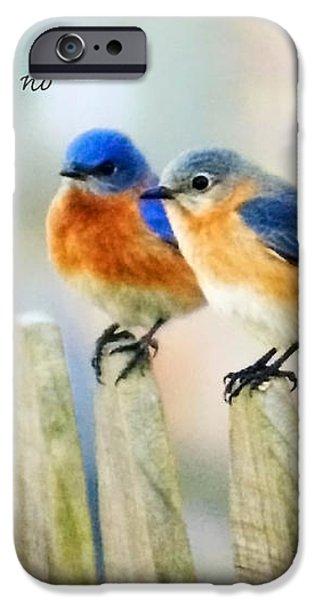 Blue Bird Love Notes iPhone Case by Scott Pellegrin