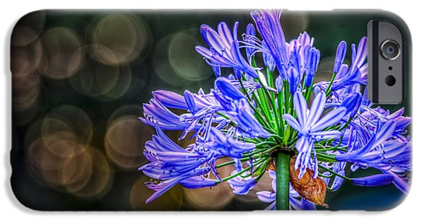 Plant iPhone Cases - Blue Blooms iPhone Case by Marvin Spates