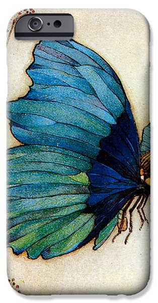 Blue Butterfly II iPhone Case by Warwick Goble