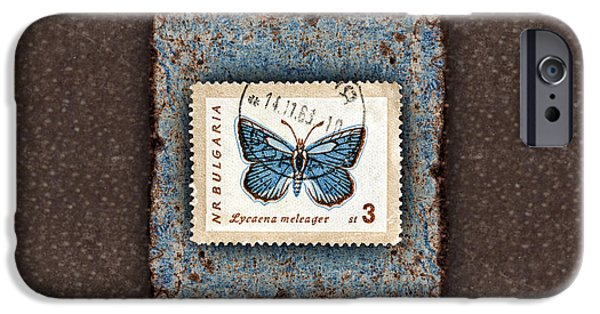 Photomontage iPhone Cases - Blue Butterfly on Copper iPhone Case by Carol Leigh