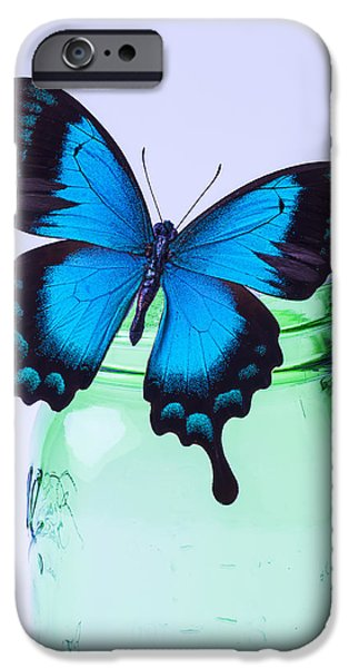 Concept Photographs iPhone Cases - Blue Butterfly On Green Jar iPhone Case by Garry Gay