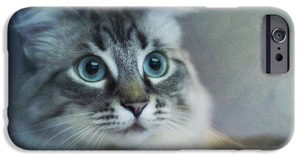 Fauna iPhone Cases - Blue Eyed Queen iPhone Case by Priska Wettstein