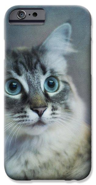 blue eyed queen iPhone Case by Priska Wettstein