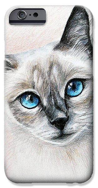 Cat Drawing Drawings iPhone Cases - Blue Eyes iPhone Case by Lena Auxier