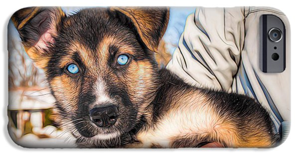 Husky iPhone Cases - Blue eyes iPhone Case by Michel Emery