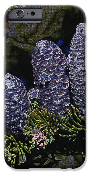 Blue Fir Cones 2 outlined iPhone Case by Sharon  Talson