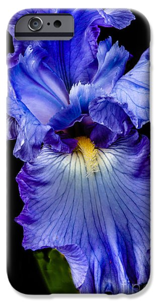 Stupendous iPhone Cases - Blue Flag iPhone Case by Robert Bales