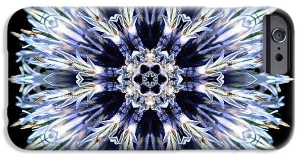 David J Bookbinder iPhone Cases - Blue Globe Thistle Flower Mandala iPhone Case by David J Bookbinder