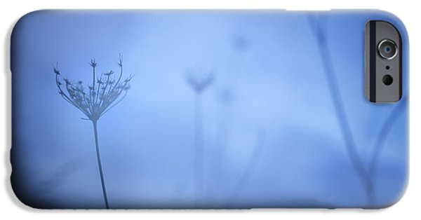 Nature Abstract iPhone Cases - Blue hour in the paradise iPhone Case by Guido Montanes Castillo