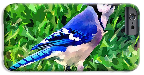 Bluejay iPhone Cases - Blue Jay iPhone Case by Stephen Younts