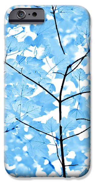 Monotone iPhone Cases - Blue Leaves Melody iPhone Case by Jennie Marie Schell