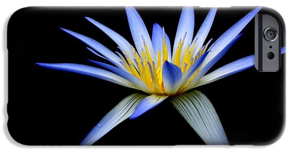 Flora iPhone Cases - Blue Lotus Of Egypt iPhone Case by Wayne Sherriff