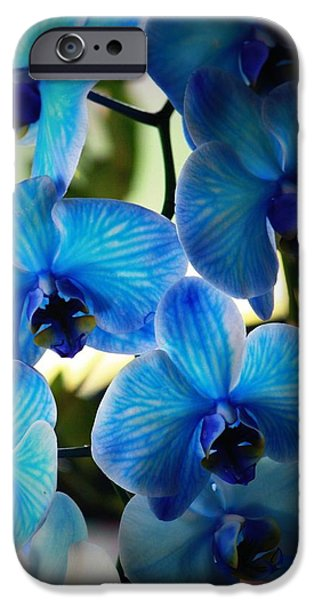 Powder iPhone Cases - Blue Monday iPhone Case by Mandy Shupp