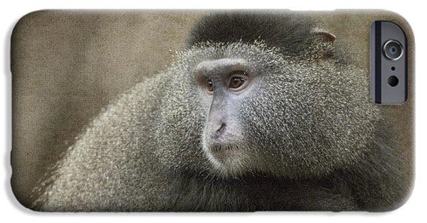 Jeff Swanson iPhone Cases - Blue Monkey iPhone Case by Jeff Swanson
