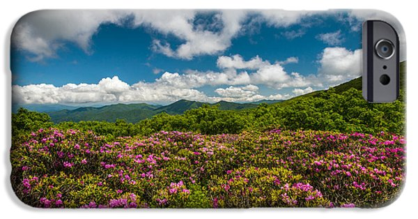 Beautiful Vistas iPhone Cases - Blue Ridge Parkway Spring Flowers - Spring in the Mountains iPhone Case by Dave Allen