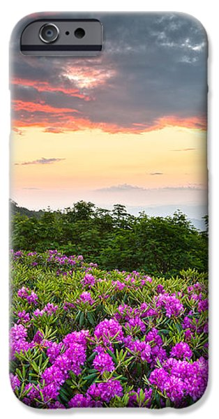 Blue Ridge Parkway Sunset - Craggy Gardens Rhododendron Bloom iPhone Case by Dave Allen