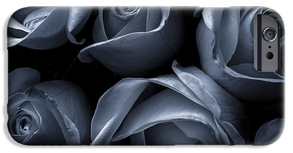 Rose iPhone Cases - Blue Roses iPhone Case by Diane Diederich