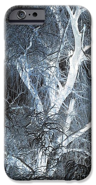 Blue Snow iPhone Case by Kathleen Struckle