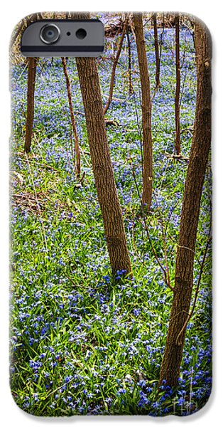 Meadow Photographs iPhone Cases - Blue spring flowers in forest iPhone Case by Elena Elisseeva