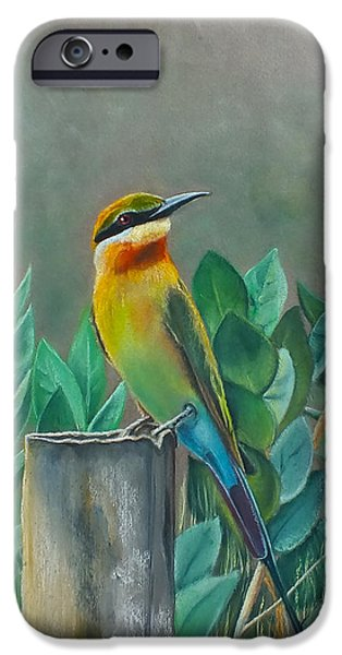 Vibrant Pastels iPhone Cases - Blue-tailed Bee Eater iPhone Case by Nirosh Perera