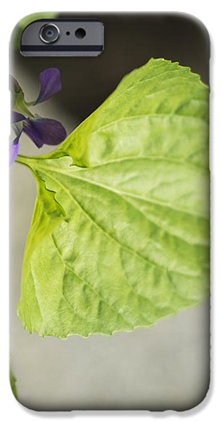 Blue Violet with Triangles iPhone Case by Rebecca Sherman