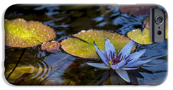 Flora Photographs iPhone Cases - Blue Water Lily Pond iPhone Case by Brian Harig