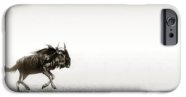 Run iPhone Cases - Blue wildebeest in desert iPhone Case by Johan Swanepoel