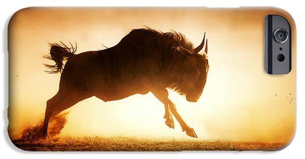 Yellow Images iPhone Cases - Blue wildebeest running in dust iPhone Case by Johan Swanepoel
