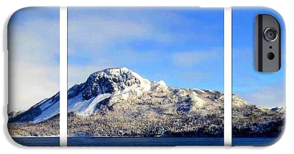 Interior Scene iPhone Cases - Blue Winter Triptych iPhone Case by Barbara Griffin