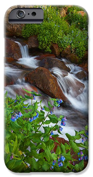 Darren iPhone Cases - Bluebell Creek iPhone Case by Darren  White