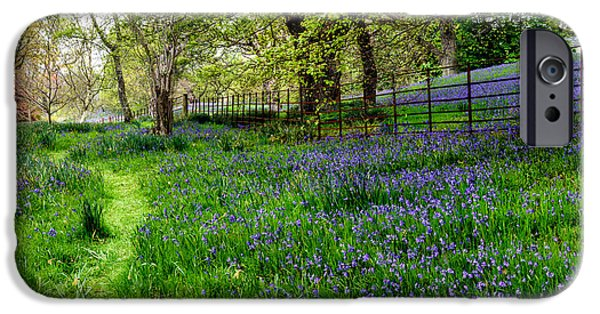 Meadow Digital iPhone Cases - Bluebell Way iPhone Case by Adrian Evans