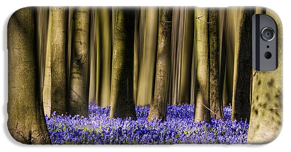 Flora iPhone Cases - Bluebell woodland Panoramic iPhone Case by Ian Hufton