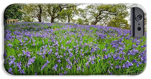 Meadow Digital iPhone Cases - Bluebells iPhone Case by Adrian Evans