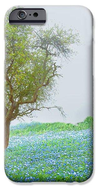 Bluebells iPhone Case by Debra and Dave Vanderlaan