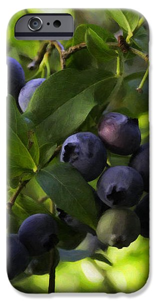 Crops iPhone Cases - Blueberries iPhone Case by Jean OKeeffe Macro Abundance Art