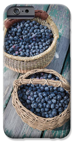 Blueberry iPhone Cases - Blueberry Baskets iPhone Case by Edward Fielding
