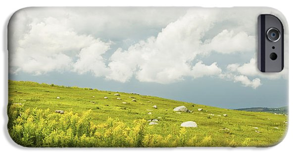 Blueberry iPhone Cases - Blueberry Field And Goldenrod With Dramatic Sky In Maine iPhone Case by Keith Webber Jr