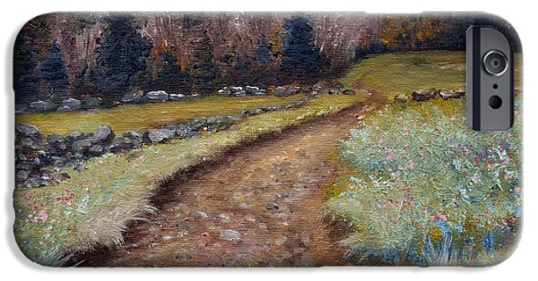 Maine Roads Paintings iPhone Cases - Blueberry Field Early Spring iPhone Case by Laura Tasheiko