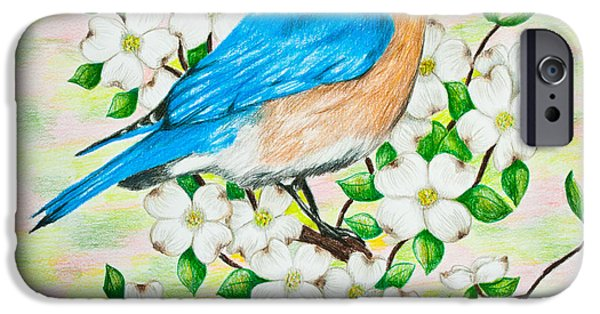 Color Drawings iPhone Cases - Bluebird and Dogwood iPhone Case by Lena Auxier