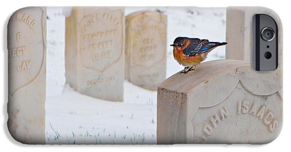 Headstones iPhone Cases - Bluebird iPhone Case by Chris Berry