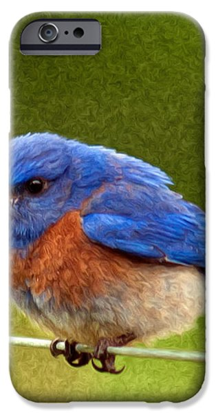 BlueBird  Painting iPhone Case by Jean Noren