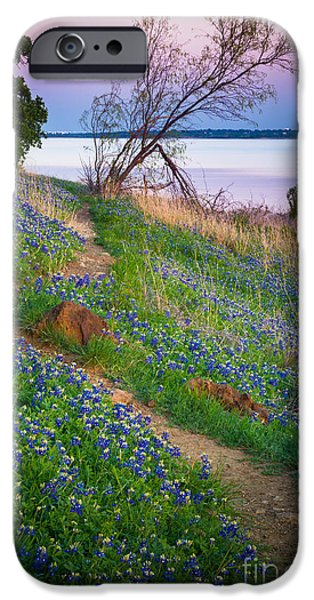 Mounds iPhone Cases - Bluebonnet Path iPhone Case by Inge Johnsson