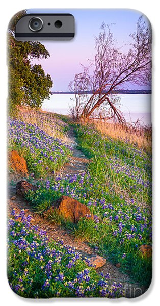 Grapevine iPhone Cases - Bluebonnet Trail iPhone Case by Inge Johnsson