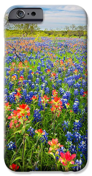 Pasture Scenes Photographs iPhone Cases - Bluebonnets and Prarie Fire iPhone Case by Inge Johnsson