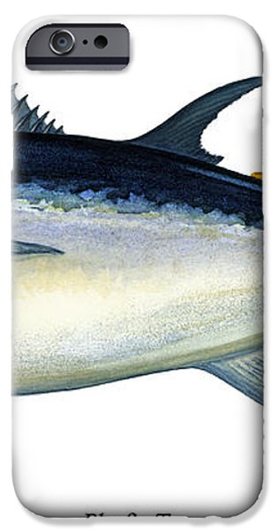 Bluefin Tuna iPhone Case by Charles Harden